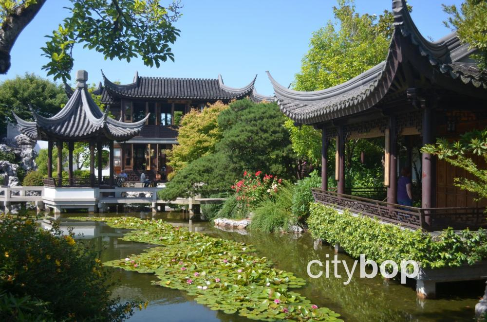 Lan Su Chinese Garden Portland Best Things To Do Citybop