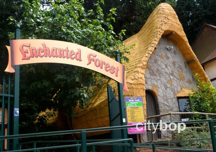 Enchanted Forest Theme Park