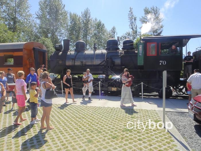 Mt Rainier Railroad