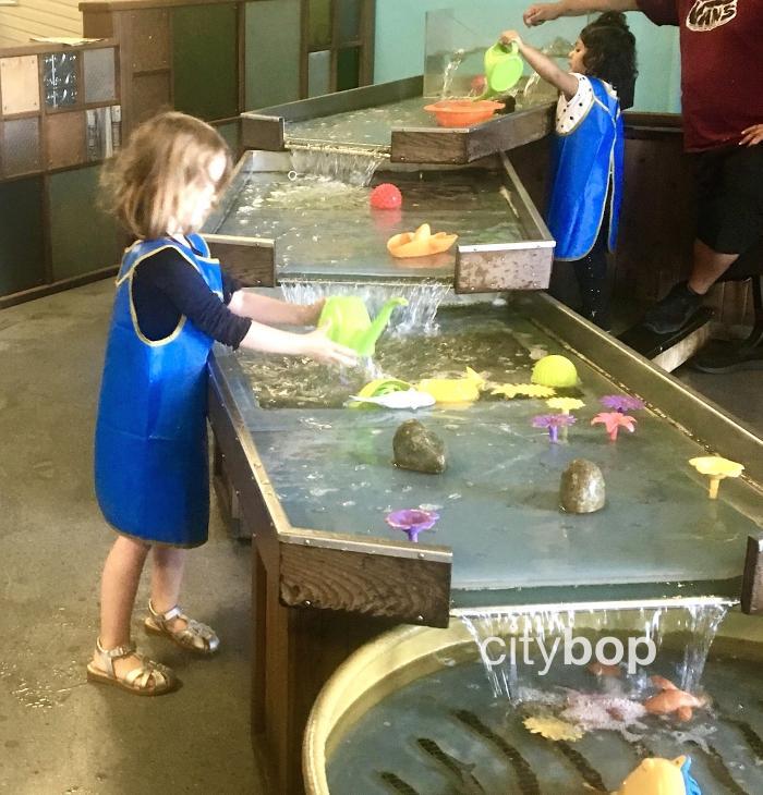 Tacoma Children's Museum