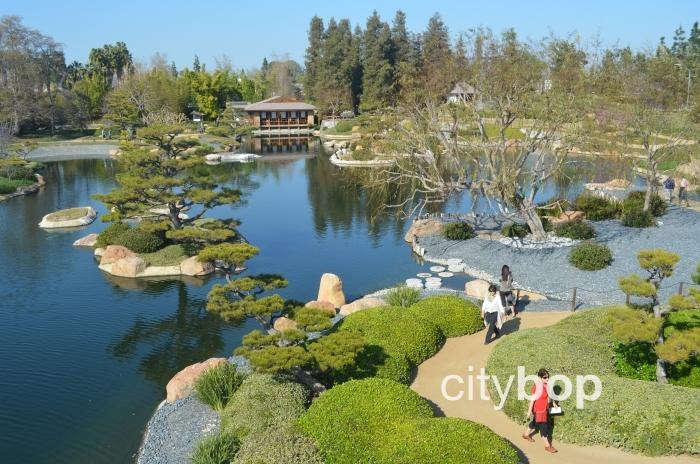 Japanese Garden Los Angeles