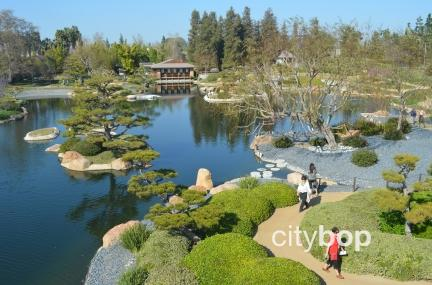 Japanese Garden Los Angeles
