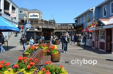 10 BEST Attractions at Pier 39